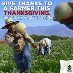 Who else is cooking this #Thanksgiving? Use #FairTrade ingredients & help alleviate global poverty! Check out our shopping list here: http://fairtrd.us/1MZk8r1 #recipe #cooking #baking