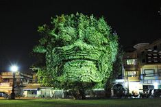 Super cool >> 3D Projections on Trees - Imgur