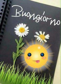 Buon giorno - 13078