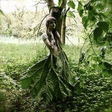 Helen Warner Photography - The Meliae's Dress.   dreams, nightmares. love her work.