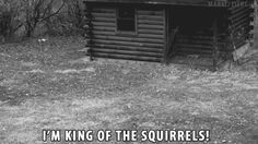 IM KING OF THE SQUIRRELS!!!!