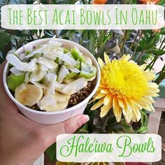 Hale'iwa Bowls are the best acai bowls you will find on Oahu, Hawaii. Best food in Hawaii. They are absolutely amazing.