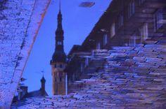 Tallinna lombid - City Photography, Photography of Tallin