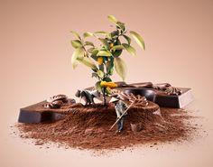 Ознакомьтесь с этим проектом @Behance: «Fair Trade - Cacao» https://www.behance.net/gallery/31326957/Fair-Trade-Cacao