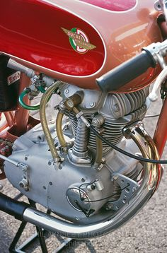 1959 Ducati F3 175 single