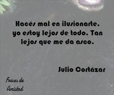 Frases de amistad lejana de Julio Cortázar