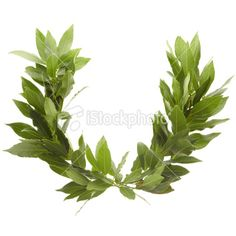 laurel wreath for Thinking Day (Greece)