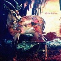Moon Pollen - Gazela by Moon Pollen on SoundCloud
