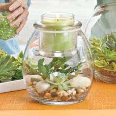 Clearly Creative™ Escential Jar Holder by PartyLite - Decorate and personalize for any season! http://www.partylite.biz/legacy/sites/nikkihendrix/productcatalog?page=productdetail&sku=P91532&categoryId=58466&showCrumbs=true #green #candle #gardening #succulent #jar #glass #fillers #homedecor #centerpiece #wedding