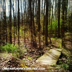 Man, it's been nice out lately - spring is finally here! Nice 8 mile cruise on the Crescent Trail the other day... http://www.benmurphyonline.com #parentathlete #fitfluential #f3 #beachbody #healthy #trailrunning #trailsroc #furtherfasterforever #neverstop #instarunners #wellness #weightloss #love #instagood #bestoftheday #photooftheday #instamood #igers #picoftheday #goodday #fitmotivation #roc #outside #flx #instafit #fitspiration #igdaily #tagsforlikes #fitness