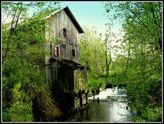 Kiełczewice Maryjskie. Młyn wodny w ruinie, w głębi widoczna śluza - Photography by Janusz Kulik -- http://www.panoramio.com/photo/52377125