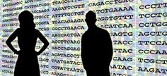 After ten years, the first draft of the human genome is complete in 2003.  #Science #History #Firsts