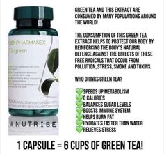 Tegreen 6 cups of Green Tea Tegreen Capsules, Green Tea Capsules, Green Tea Benefits, Flexibility Workout, Anti Aging Skin Care, How To Relieve Stress, Healthy Skin, Weight Loss, Skin Products
