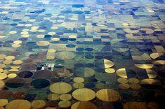 Crop Circles from 40,000 Feet - Somewhere near the Oklahoma and Texas Border.  by BillGraf, via Flickr