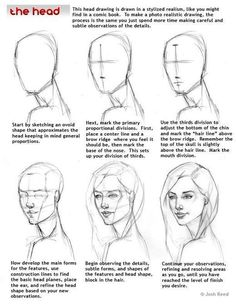 Human Head Drawing Reference Guide