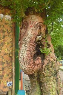 What a cool tree! Ganesh Ganapati ... remover of obstacles ... <3 www.24kzone.com