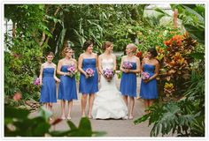Pam + Matt: Frederik Meijer Gardens Wedding in Grand Rapids, Michigan {Photo courtesy Allie Siarto & Co. Photography}
