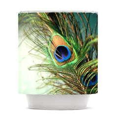 Kess InHouse Sylvia Cook Teal Peacock Feather Shower Curtain, 69 by 70-Inch Kess InHouse,http://www.amazon.com/dp/B00E21DJRY/ref=cm_sw_r_pi_dp_3oD5sb12SM61PE9B
