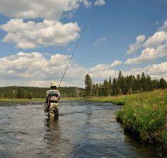 How Do I Start Fly Fishing?