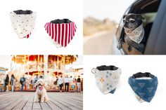 New Bandana Collars and Ties from Wildebeest