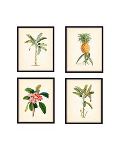 Tropical Botanical Art Print Set, Giclee Art Print, Poster, Wall Art, Beach Decor, Cottage Home, Palm Tree Print, Pineapple Print