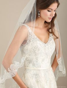 V7305 1-tier fingertip veil with pewter metallic lace  **Available for order at A Curvy Bride**