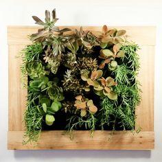Florafelt 12-pocket Vertical Garden Planter with Cedar Frame Kit.