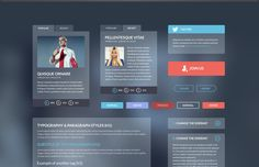 The Iceberg UI kit will make any website stand out because of its fresh, delicate and alluring design. The modern, elegant layout is ideal for a website that needs a contemporary feel.