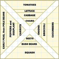 Garden Box ideas!