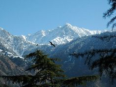Scenic Attractions of Himachal Pradesh - Enjoy in Dream Valley