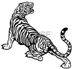 tiger tattoo sleeve - Tiger black and white illustration Tiger Tattoo Small, Tiger Tattoo Design, Tiger Design, Tattoo Designs, Tiger Sketch, Tiger Drawing, Tiger Painting, Tiger Artwork, Tiger Illustration