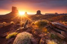 Starting his trip in the US, the France native explored both the east and west coast. Pictured: A dog watches the sunset over Monument Valley in Utah Beautiful Sunrise, World's Most Beautiful, Beautiful Places, Monument Valley, Travel Around The World, Around The Worlds, Nature Photography, Travel Photography, Road Trip