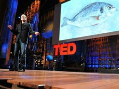 Dan Barber: How I fell in love with a fish | Video on TED.com