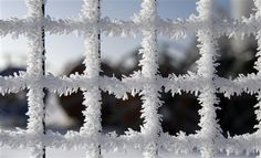 Hoar Frost on a Fence<3