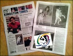 Thank you to the Kingston Times Editor Dan Barton, writer Kathleen Griffin and Phyllis McCabe for featuring our beautiful girl This is the first NY based publication to feature an article about Cuda. Community means a lot to us and we're proud to be part of this one. Written by Kathleen Griffin Life is strange sometimes, the way small actions change your life unexpectedly. Julie LeRoy wasn't expecting much that day five years ago when her job as an animal control officer called her to a home…
