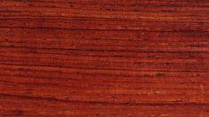 Les palissandres (rosewood) font partie d'une même famille botanique, Dalbergia. Elles viennent de régions tropicales et sont très durs et très rares.
