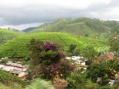 "Sri Lanka's ""Hill Country"", Hatton, Sri Lanka (www.secretlanka.com) #SriLanka #Hatton"