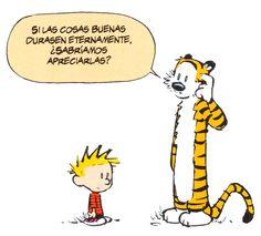 Calvin and Hobbes.  Bill Watterson