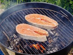 Grilling fish has never been easier! Click to follow our handy guide for how to grill fish perfectly every time.