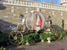 cinderella and coach in the disneyworld world parade | True Love Week At Disney World (Photos)