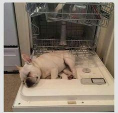 Trop fatiguant la vaisselle... ...