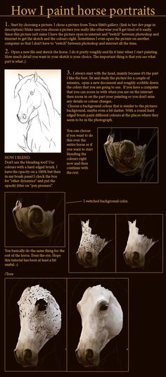 How to paint horse portraits.. by feverpaint