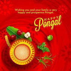 January Happy Pongal (Pongal Vazhthukkal) WhatsApp DP Images, Wishes, Quotes, Messages HD Pongal Festival Images, Pongal Images, Happy Sankranti Wishes, Happy Pongal Wishes, New Year Greeting Messages, Greeting Cards, Merry Christmas Wishes, Christmas Greetings, Pongal Wishes In Tamil