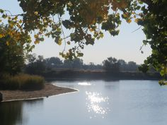 A fall view of the pond at the East side dog park, Casper, Wyoming