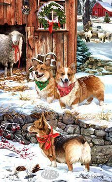 Corgi Christmas cards are 8 x 5 and come in packages of 12 cards. One design per package. All designs include envelopes, your personal message, and choice of. Cute Corgi, Corgi Dog, Birthday Corgi, Corgi Facts, Corgi Pictures, Christmas Dog, Christmas Cards, Pembroke Welsh Corgi, Christmas Pictures