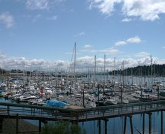 Information to fun things to do on Bainbridge Island in Washington.