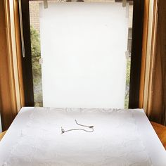 Great photography set up using tracing paper over a window, a white table above the window sill, and a piece of white foam board on an angle to reflect light around :)