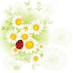 Gerber Daisy Tattoos | Daisy and ladybug tatoo artist drawing