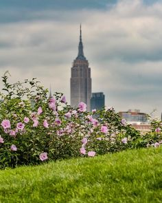 Empire State Building by eyecatchingphoto by newyorkcityfeelings.com - The Best Photos and Videos of New York City including the Statue of Liberty Brooklyn Bridge Central Park Empire State Building Chrysler Building and other popular New York places and attractions.