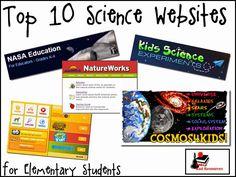 Elementary Education best science major
